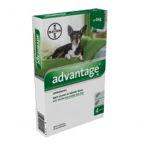 Advantage 40 Hond (< 4 kg) 4 x 0,4 ml pipetten    incl. gratis teken/ vlooienkam (art. 3382)