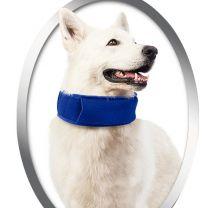 Gekoelde Honden Halsband